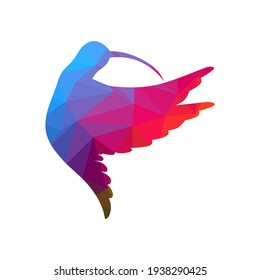 Low poly hummingbird drawing on white background