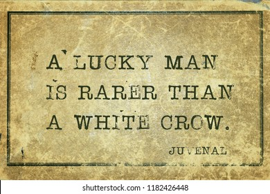 A lucky man is rarer than a white crow - ancient Roman poet Juvenal quote printed on grunge vintage cardboard