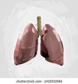 Lungs anatomy sketch artwork isolated on white. Lungs concept.