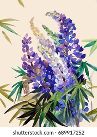 Lupine, flowers, watercolor.