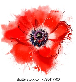 Luxurious red poppy closeup. As an element of decor, print, apparel or any other method of application