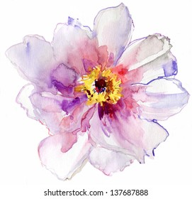 Luxurious white peony flower painted in pastel colors. painting