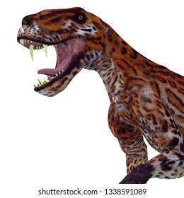 Lycaenops Cat Head 3D illustration - Lycaenops was a carnivorous cat-like dinosaur that lived in South Africa during the Permian Period.