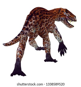 Lycaenops Cat Tail 3D illustration - Lycaenops was a carnivorous cat-like dinosaur that lived in South Africa during the Permian Period.