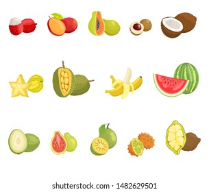 Lychee and mango fruits set with names. Ambarella and watermelon, guava and kiwano. juicy jackfruit and banana with peel. Longan and papaya raster