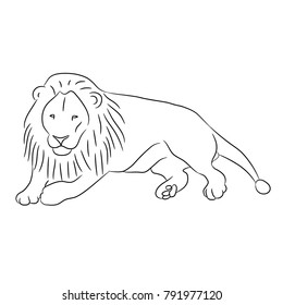 Lion Lying Down Stock Illustrations Images Vectors Shutterstock Like most logos, and nearly all my work, it needed to work in any size, from very small to large. https www shutterstock com image illustration lying lion contour black lines on 791977120