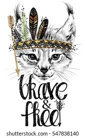lynx. forest animal illustration. brave and free.