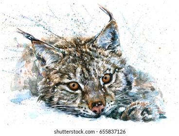 Lynx  watercolor animals predator