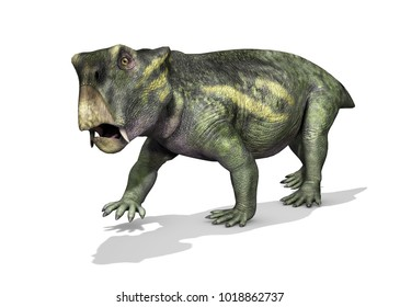The Lystrosaurus was a dinosaur that lived during the early Triassic period - 3D render.
