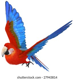 Rain Forest Birds Images, Stock Photos & Vectors | Shutterstock