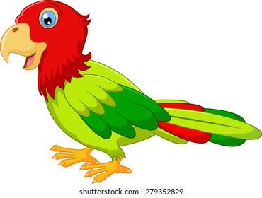 Macaw bird carton