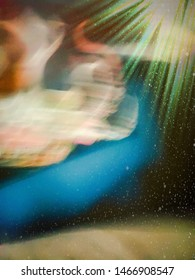 Magic carpet ride dreaming jennie