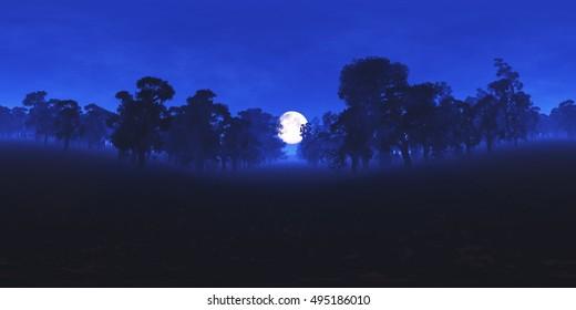 Magic Forest at Night under Fullmoon VR360 3D Illustration