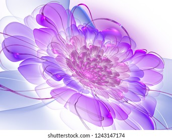 Magic night fantasy. Abstract exotic fractal background, spiral flower with glowing core with textured petals. Design for posters, t-shirts, creative graphic. Psychedelic Digital art. 3D rendering.