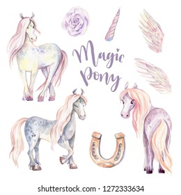 Magic Pony, Pegasus, Unicorn set. Watercolor illustration, beautiful isolated little horse with flowers, wings, horn. Romantic pastel colors