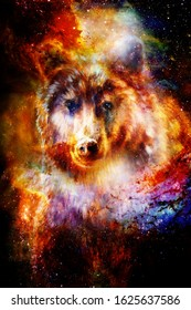 magical space wolf, multicolor computer graphic collage