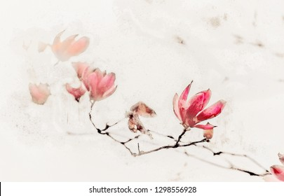 Magnolia in Chinese Ink and Wash Painting Style.