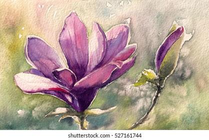 Magnolia watercolor painting illustration greeting card.