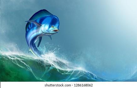 Mahi mahi or dolphin fish on white. Mahi mahi blue fish.