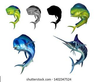 Mahi mahi or dolphin fish on white. Realistic illustration of mahi-mahi or dolphin fish on white background isolate. Black silhouette of a large set of fish flat.