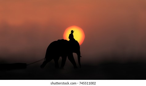 Mahout ride elephant to pull the log journey through countryside with amazing sky,Thailand.