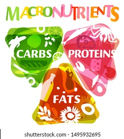Main food groups - macronutrients. Carbohydrates, fats and proteins in comparison. Dieting, healthcare and eutrophy concept. Beautiful illustration on a white background. Vertical poster.