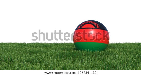 Malawi Malawian flag soccer ball lying in grass, isolated on white background. 3D Rendering, Illustration.