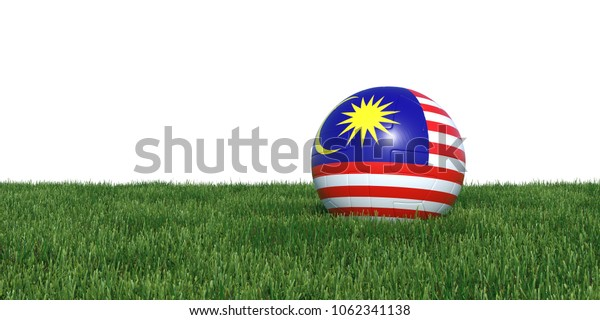 Malaysia Malaysian flag soccer ball lying in grass, isolated on white background. 3D Rendering, Illustration.