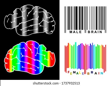 Male and female brain differ. Men and women with diverse characteristics and individualities.