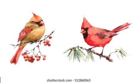 Male and Female Cardinals sitting on the Branch Two Birds Watercolor Hand Painted Greeting Card Fall Winter Christmas Illustration Set