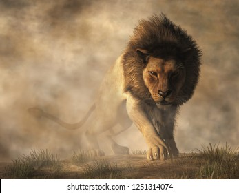 A male lion stalks towards you out of the fog.  He has a rather angry look on his face, as if he just figured out that it is you that has been teasing him with a laser pointer.  3D Rendering