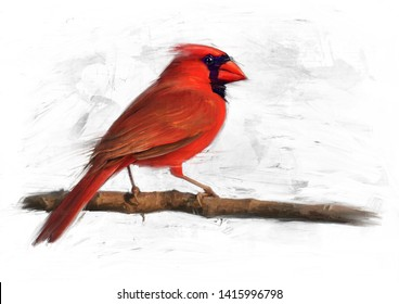 MALE NORTHERN CARDINAL BIRD OIL COLOUR PAINTING
