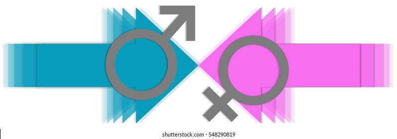 Male Vs Female Arrows