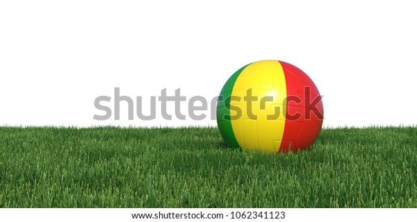Mali Guinea Guineas flag soccer ball lying in grass, isolated on white background. 3D Rendering, Illustration.