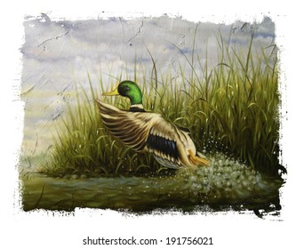 Mallard Duck Torn Edges