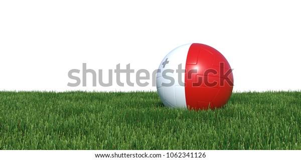 Malta Maltese flag soccer ball lying in grass, isolated on white background. 3D Rendering, Illustration.