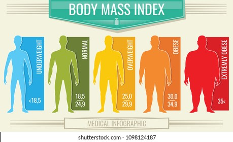 Man body mass index. fitness bmi chart with male silhouettes and scale. Body mass index fot health life, obesity and overweight illustration