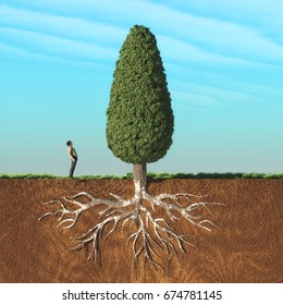 A man look up a big tree in two layers , with roots underground. This is a 3d render illustration