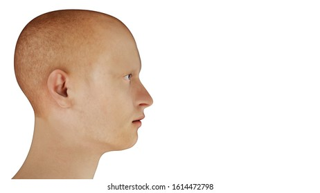 man portrait profile redhead side view on white background 3D illustration