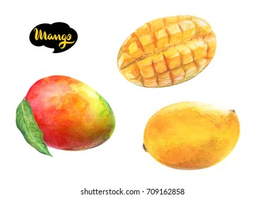Mango fruit watercolor illustration. Mango yellow, mango cut, mango with leaf isolated on white background.