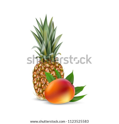 mango pineapple 3 d realistic packaging template stock illustration