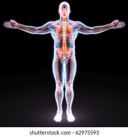 man's body under X-rays. bones are highlighted in red.