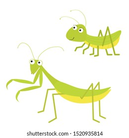 Mantis, grasshopper icon set. Cute cartoon kawaii funny character. Green insect isolated. Praying mantid. Big eyes. Smiling face. Flat design. Baby clip art. White background.