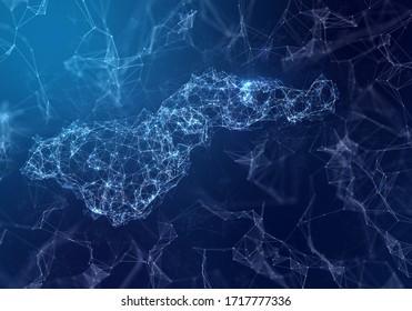 The map of American Samoa indicating a connected web of dots and lines. (series)