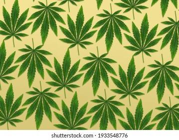 Marijuana leaves on yellow background
