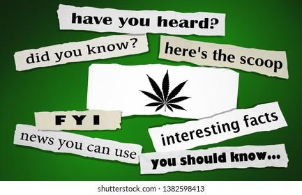 Marijuana Weed Pot Cannabis Task Newspaper Headlines Alert Articles 3d Illustration