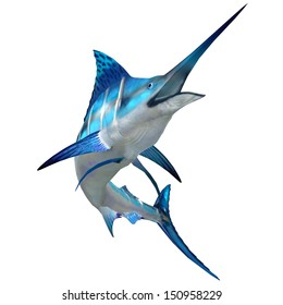 Marlin Fish on White - The Blue Marlin is a popular big game fish for fishermen and inhabits oceans throughout the world.