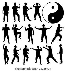 Martial Art Kung Fu Tai Chi Self Defense Exercise Fight Master People Man