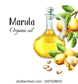 Marula Oil card. Watercolor hand drawn illustration  isolated on white background