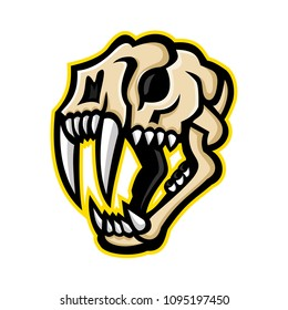 Mascot icon illustration of skull head of a saber-toothed cat or sabre-tooth viewed from side on isolated background in retro style.